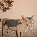 Grote oude flock stier